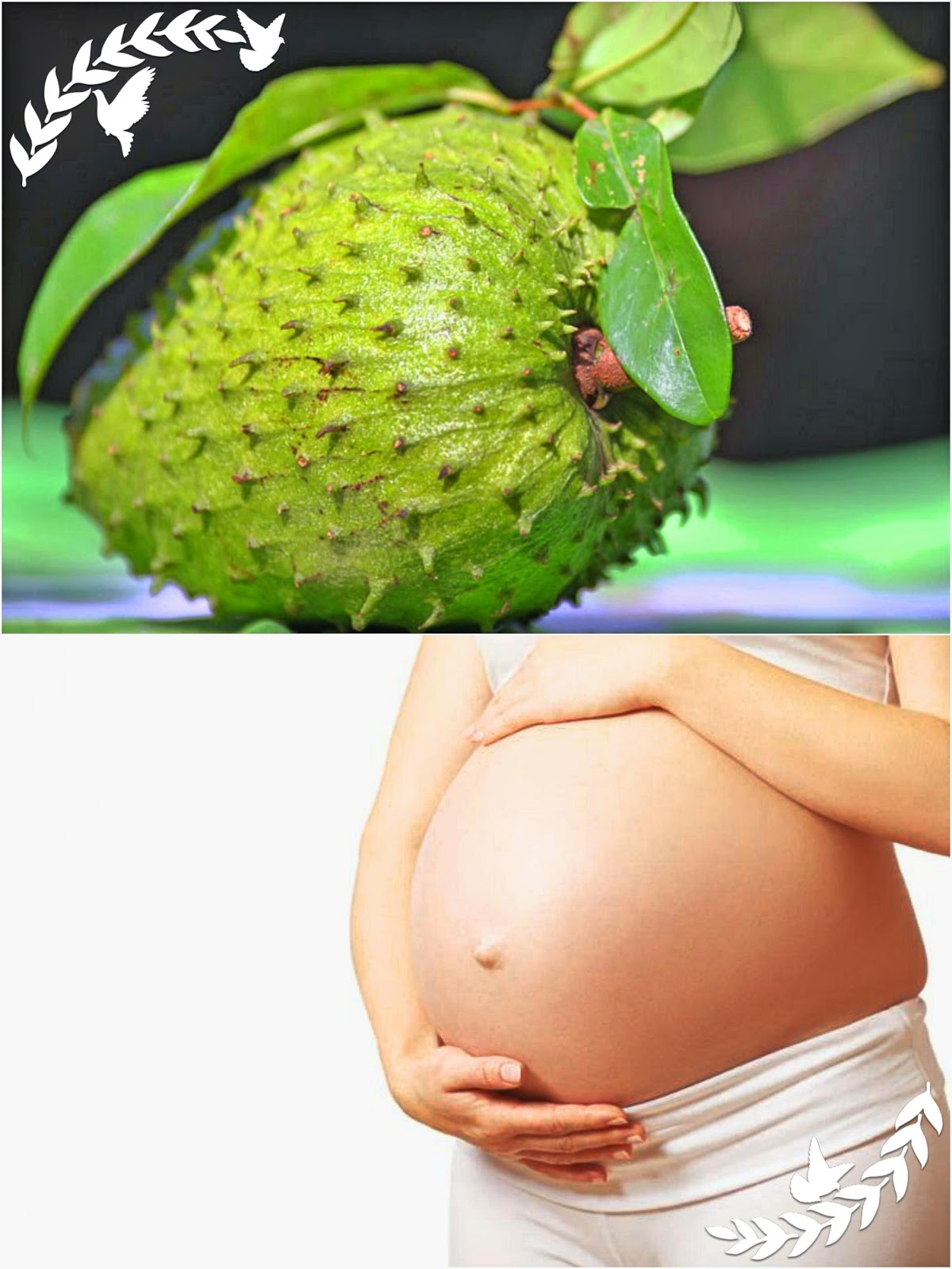 juicy fruit healthy fruits during pregnancy